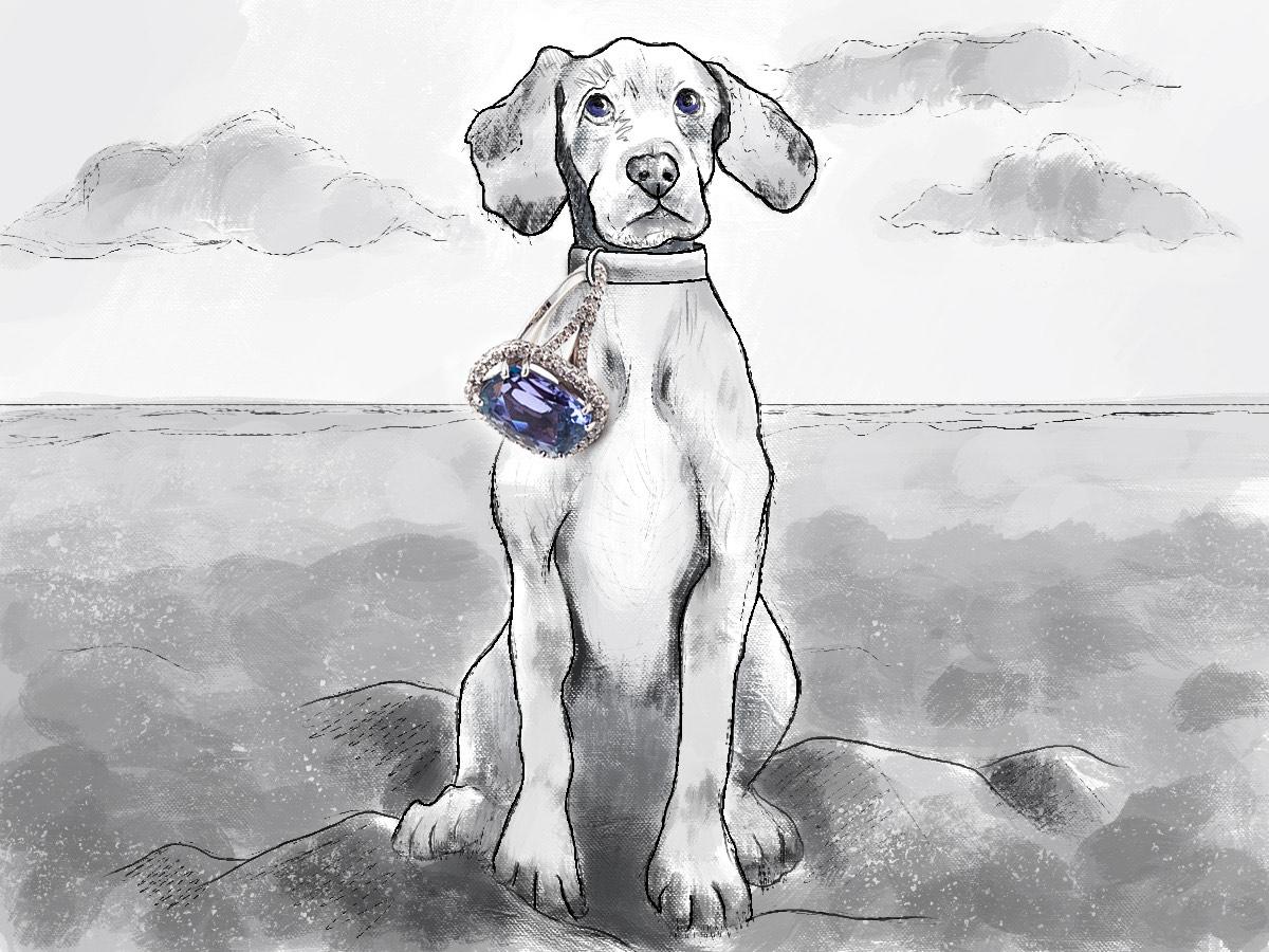 DogCocktailRing-V2-squashed